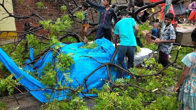 बारिश का कहर : वृद्धा के ऊपर गिरा नीम का पेड़, गंभीर