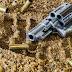 FIQUE SABENDO! / STF libera porte de arma de fogo para guardas municipais