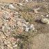 ASSUNÇÃO: Entulho e lixo acumulados a céu aberto causam transtornos à população