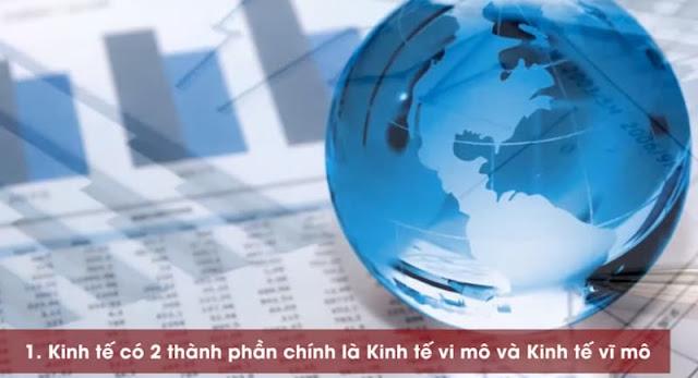 Kinh tế vi mô - vĩ mô là gì?