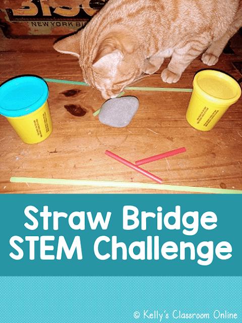 Straw Bridge STEM Challenge: Who Built the Strongest Bridge?