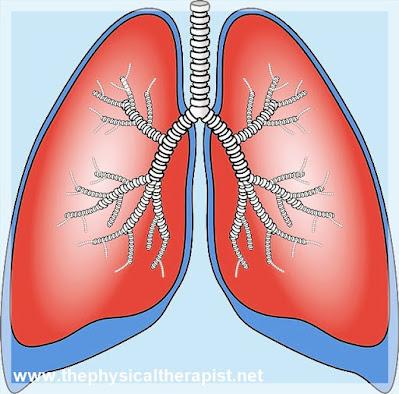 التهاب الشعب الهوائية ~ هكذا تميزها عن الإنفونزا و نزلات البرد