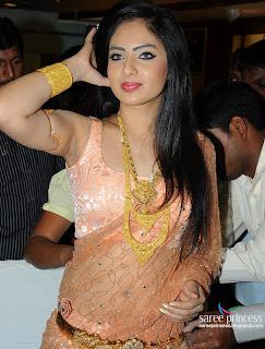 Actress Nikesha Patel Saree