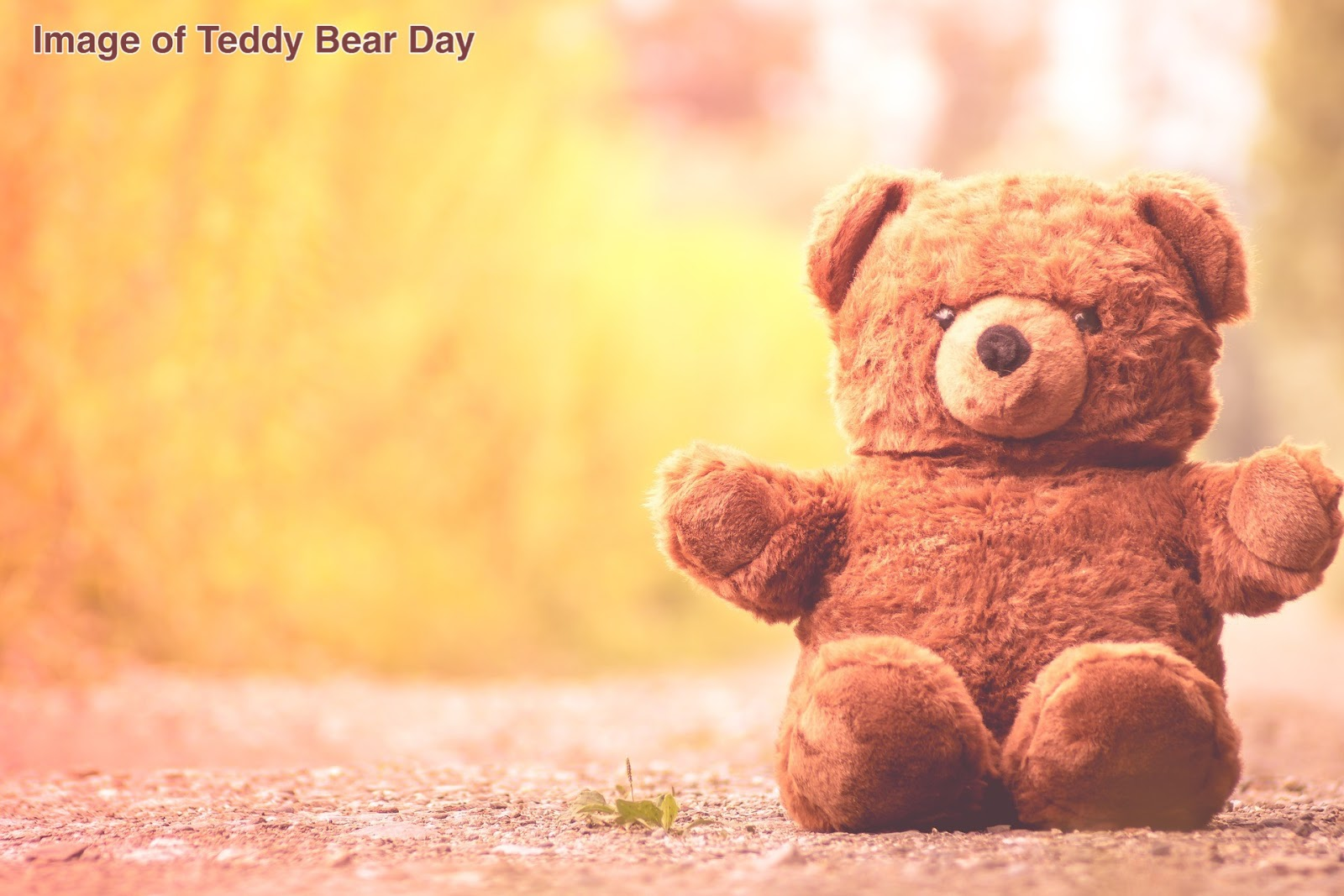 Image of Teddy Bear Day, Teddy Bear Day, Teddy Bear picture