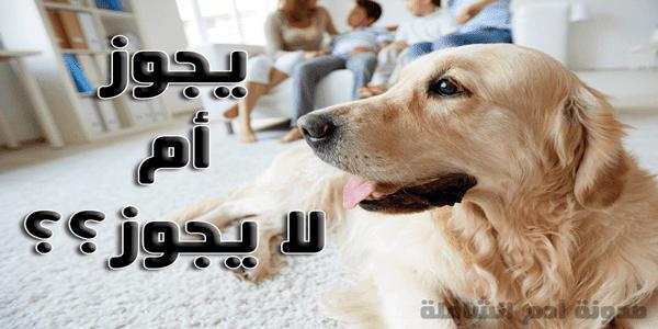 ما حكم الإسلام في تربية الكلاب؟