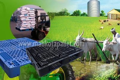 Jual Pallet Plastik Untuk Industri Pertanian