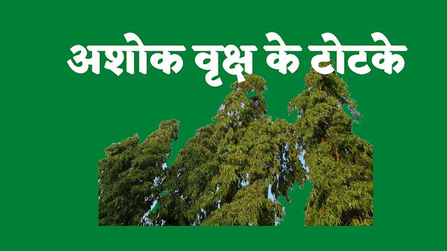 अशोक वृक्ष के टोटके | Ashoka Vriksh Totka |
