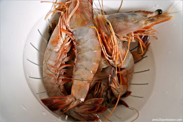 Gambas con Cabeza en Boston