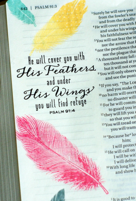 TO THE FULL: Bible Journaling -- Psalm 91:4