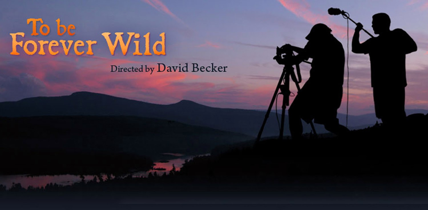 Take A Hit Of The Catskill Mountains Must See Doc Film To Be Forever Wild Gets You High On Nature