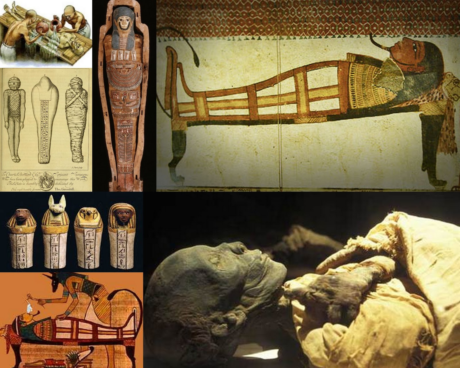 egyptian mummification process essay