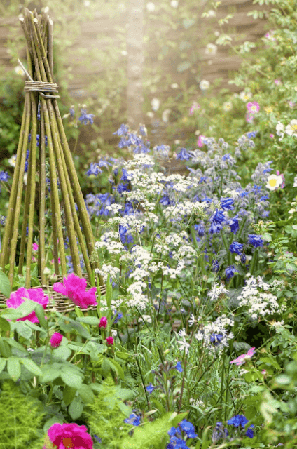 Garden Design Ideas: How To Make Garden your Outdoor Space