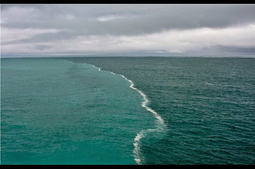 gulf of alaska where 2 oceans meet science