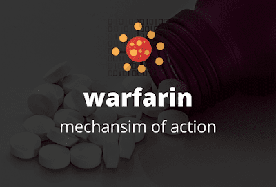 mechanism-of-action-warfarin-#simple-and-easy-way
