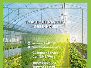 Manfaat Plastik UV (Ultra Violet) Pada Budidaya Tanaman Hidroponik dan Untuk Atap Penjemuran (Pengeringan)
