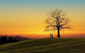 मशक्क़त का सबब अपना कभी जाया नहीं जाता | मेरी हिंदी कविता और ग़ज़ल