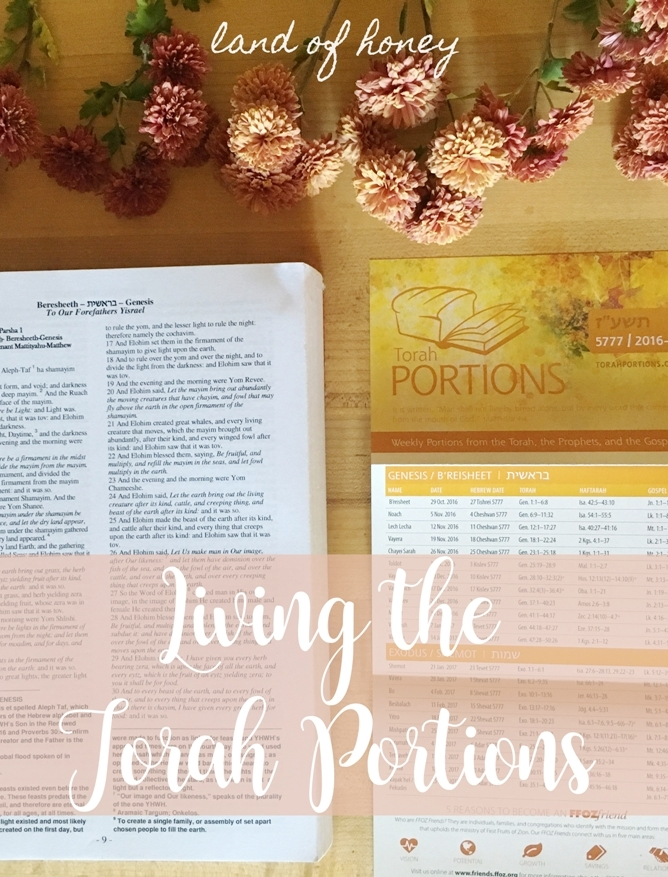 Living the Torah Portions: Shemini | Land of Honey