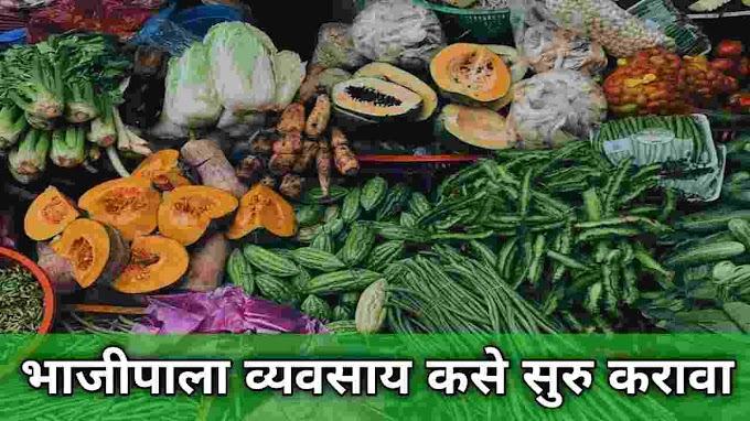 भाजीपाला व्यवसाय कसा सुरू करावा? | How to start a vegetable business | Vegetable business plan in marathi