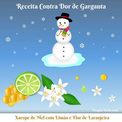 Receita Contra Dor de Garganta: Xarope de Mel com Limão e Flor de Laranjeira