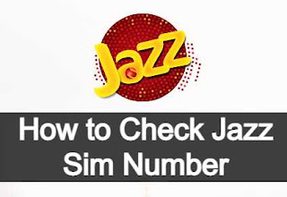 How to check your own Jazz Sim Number