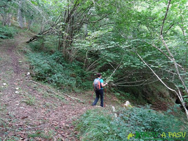 Canal de Reñinuevo: Desvío en el bosque para retomar la canal