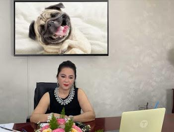 Ghép ảnh của bạn vào tivi livestream của bà Phương Hằng