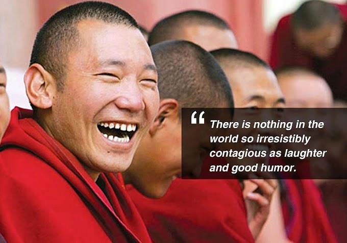 Thiền mang nụ cười và làn gió mới vào tôn giáo, ngay cả chế nhạo tôn giáo