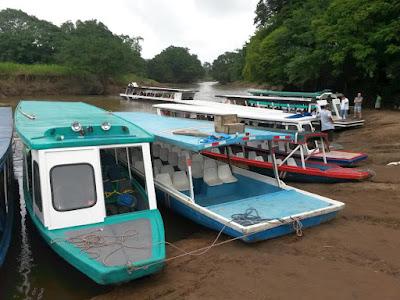 Embarcadero de la Pavona en Tortuguero