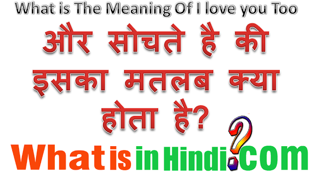 i love you to meaning in hindi