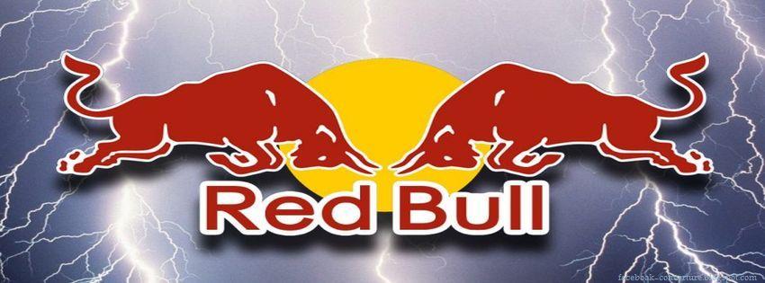 Puma Red Bull Shoes