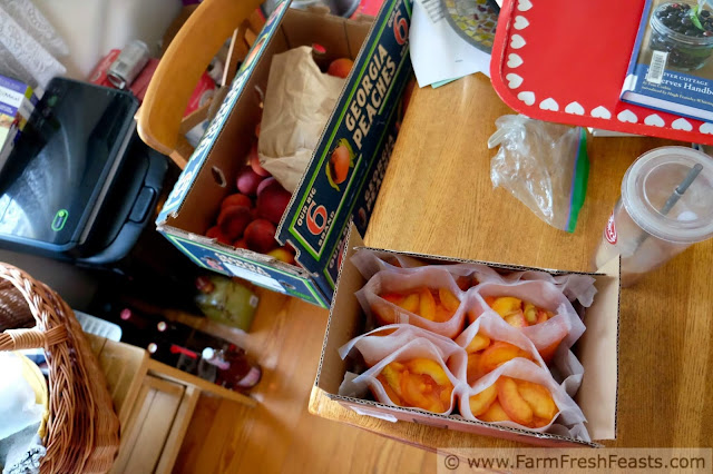 a case of peaches from the peach truck and frozen peaches