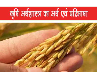 कृषि अर्थशास्त्र का आशय परिभाषाएं |Meaning Definitions of Agricultural Economics