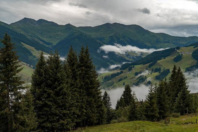 Waldwellness-Weg Saalbach | Regenwandern im #HomeofLässig | Waldbaden in Saalbach 02