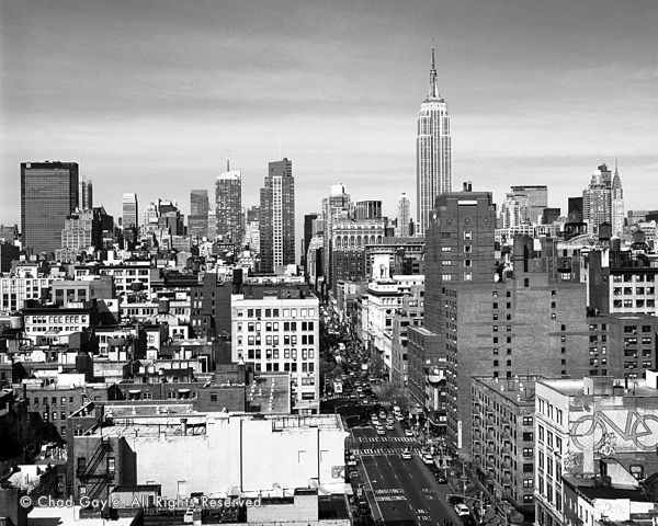 New York City was the inspiration for designer Jason Wu's Spring Summer 16 collection