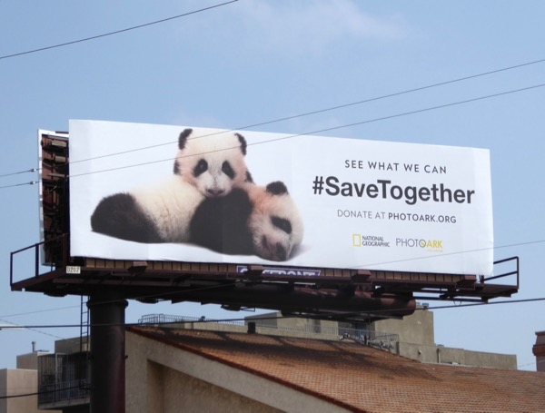 National Geographic Photoark Pandas billboard