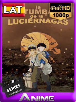 La Tumba de las Luciernagas [1988] latino HD [1080P] [GoogleDrive] RijoHD