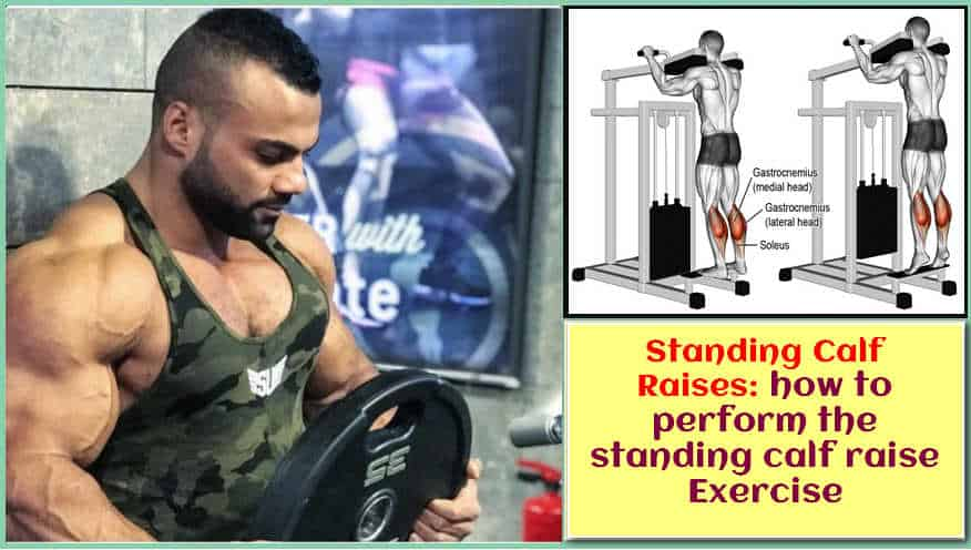how to perform the standing calf raise Exercise