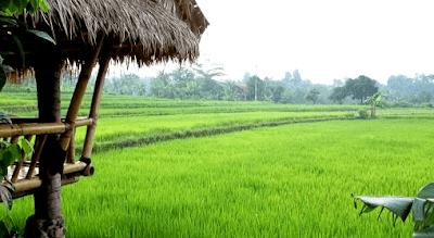 Desa Karanggeneng Desa Kecil Tapi Banyak Cerita