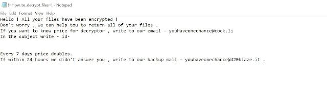 Youhaveonechance@cock.li Lightning (Ransomware)