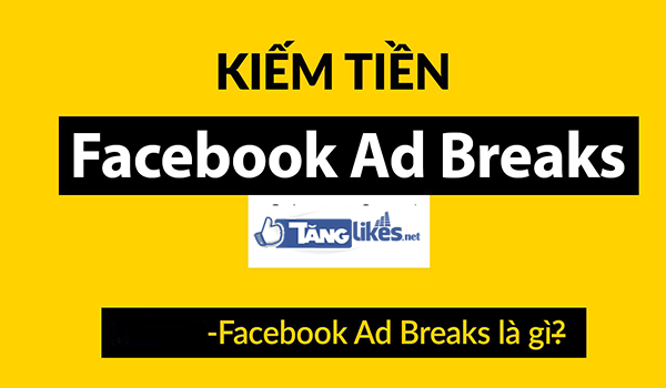 facebook ad break