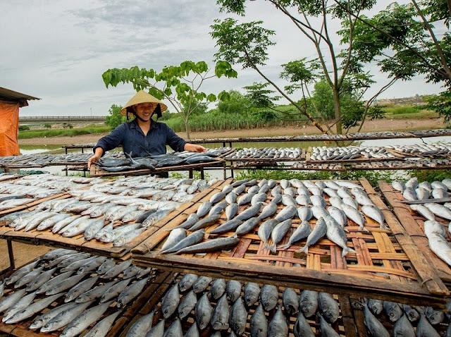 Thơm ngon cá nướng ở làng nghề nổi tiếng Nghệ An - 4