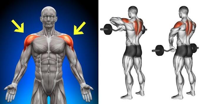 6 Most Effective Exercises For Building Massive Shoulders