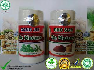 Image Obat Sipilis 3 Hari Minum Asli Sembuh Total Dari De Nature Indonesia