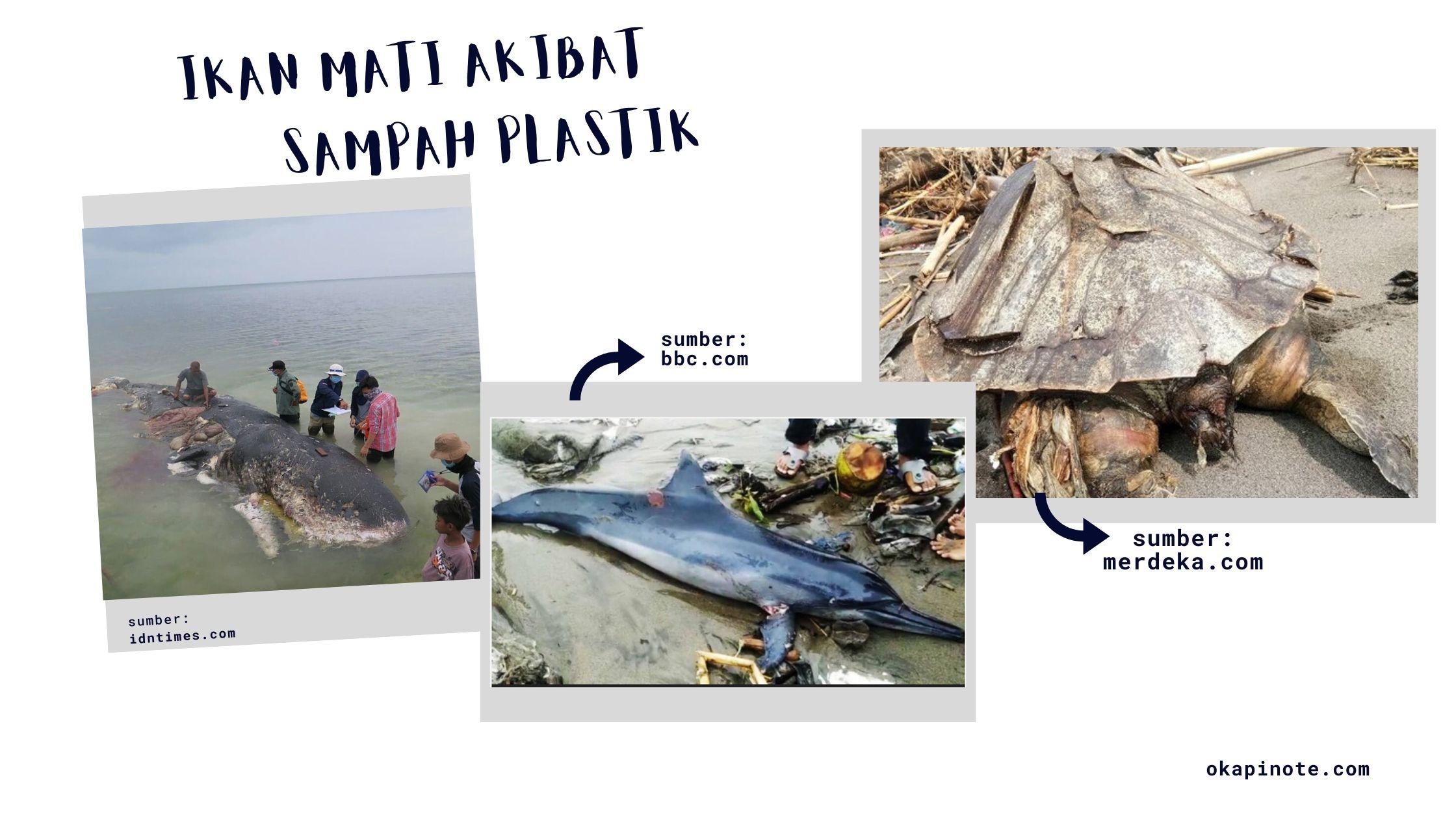 Selamatkan Laut Indonesia dari Sampah Plastik