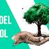 La celebración simbólica por el  Día del Árbol será en Herradura