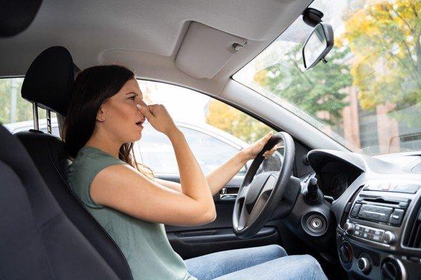 29 cách khử mùi xe ô tô mới lọc sạch không khí nhờ mẹo nhàn tênh