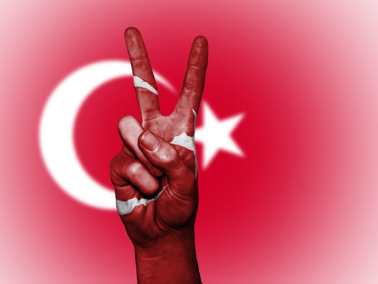 turco para principiantes