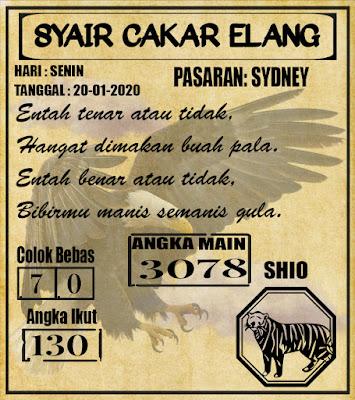 SYAIR SYDNEY 20-01-2020