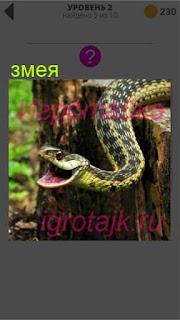на дереве извивается змея с открытой пастью 2 уровень 400+ слов 2