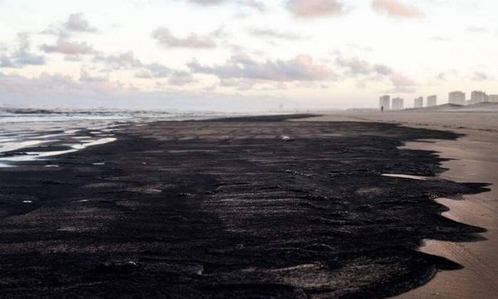 Maiores desastres ambientais do Brasil - Florestal Brasil